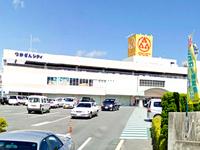 ザ・ダイソー サンエー津嘉山シティ店