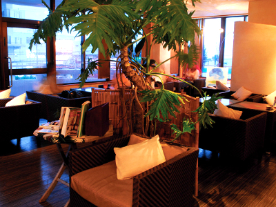 ハーフカフェ セカンドフロア