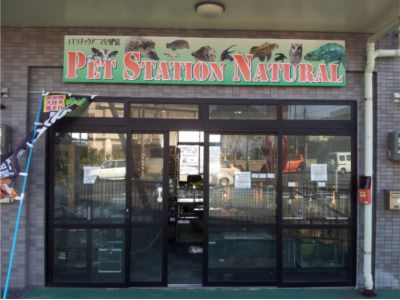 Pet Station Natural