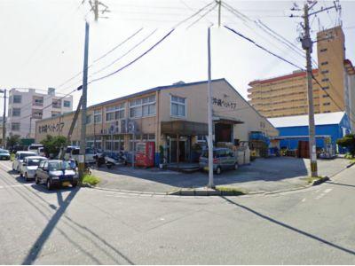 沖縄ペットケア