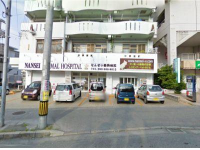 なんせい動物病院